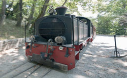 The historical steam train of Pelion